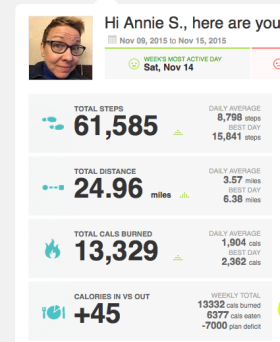 Annie's Fitbit numbers